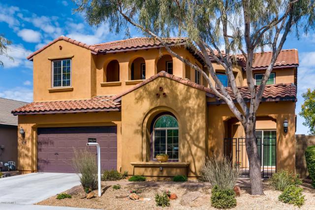3750 E Ringtail Way, Phoenix, AZ 85050 (MLS #5899477) :: Conway Real Estate