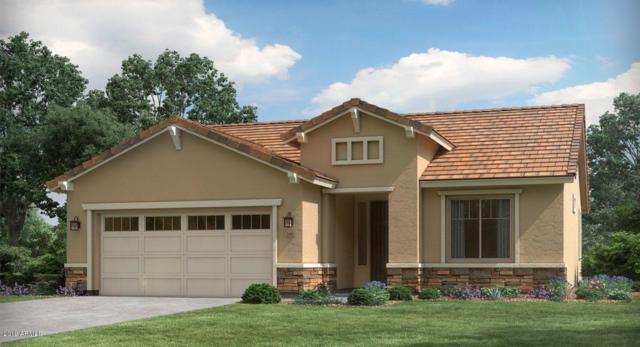 4690 N 204TH Avenue, Buckeye, AZ 85396 (MLS #5899478) :: The Results Group