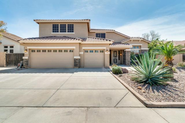 2957 E County Down Drive, Chandler, AZ 85249 (MLS #5899487) :: Lux Home Group at  Keller Williams Realty Phoenix