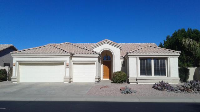 1814 W Hawk Way, Chandler, AZ 85286 (MLS #5899496) :: Lux Home Group at  Keller Williams Realty Phoenix