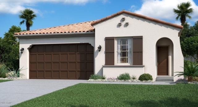 19858 W Devonshire Avenue, Litchfield Park, AZ 85340 (MLS #5899509) :: neXGen Real Estate