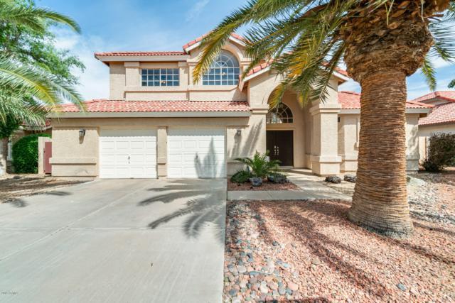 52 W Calle Monte Vista Drive, Tempe, AZ 85284 (MLS #5899516) :: Yost Realty Group at RE/MAX Casa Grande