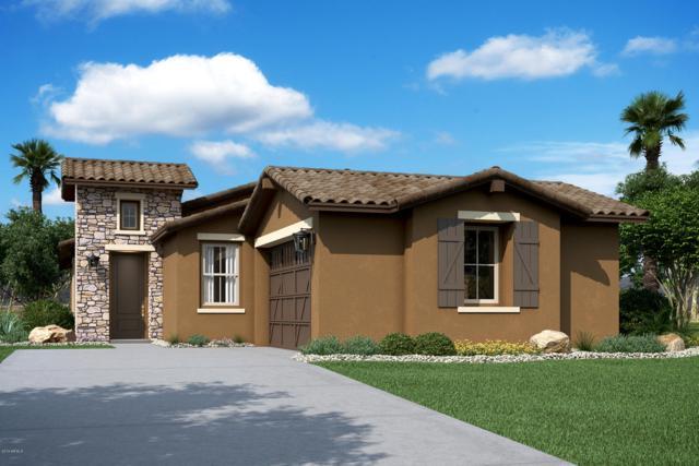 19872 W Monterosa Street, Litchfield Park, AZ 85340 (MLS #5899525) :: neXGen Real Estate