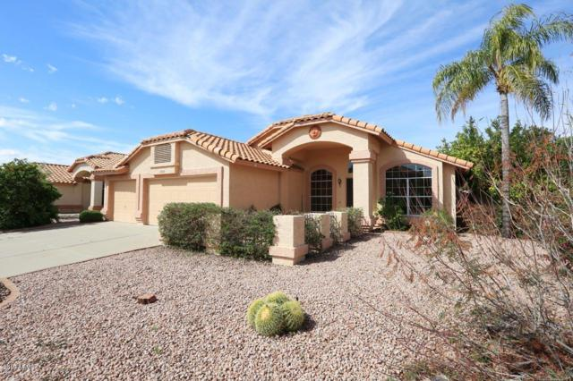 19208 N 36TH Way, Phoenix, AZ 85050 (MLS #5899531) :: Yost Realty Group at RE/MAX Casa Grande