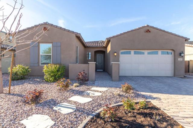 3269 E Ironside Lane, Gilbert, AZ 85298 (MLS #5899544) :: Lux Home Group at  Keller Williams Realty Phoenix