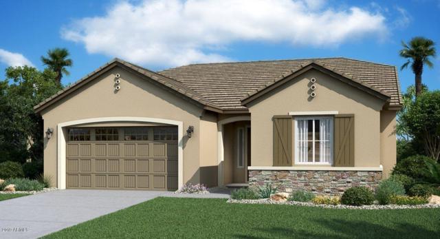 19712 W Glenrosa Avenue, Litchfield Park, AZ 85340 (MLS #5899553) :: neXGen Real Estate