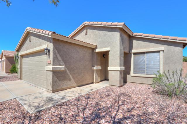 43598 W Colby Drive, Maricopa, AZ 85138 (MLS #5899560) :: The Laughton Team