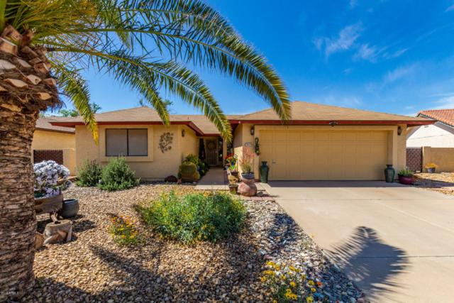 26426 S Hogan Drive, Sun Lakes, AZ 85248 (MLS #5899562) :: RE/MAX Excalibur