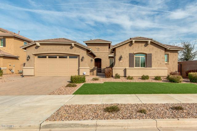 20454 E Raven Drive, Queen Creek, AZ 85142 (MLS #5899568) :: Lux Home Group at  Keller Williams Realty Phoenix