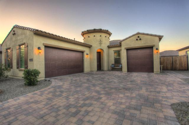 3840 E Powell Place, Chandler, AZ 85249 (MLS #5899581) :: The Kenny Klaus Team