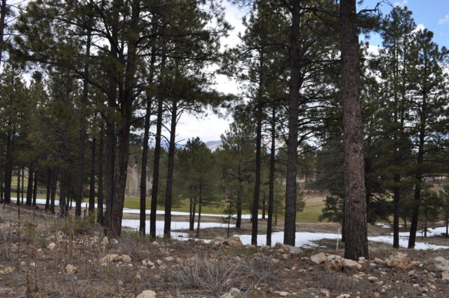 1967 E Barrnaca Drive, Flagstaff, AZ 86005 (MLS #5899601) :: Kepple Real Estate Group