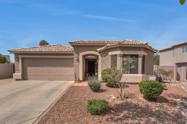 7824 S 16TH Place, Phoenix, AZ 85042 (MLS #5899602) :: neXGen Real Estate