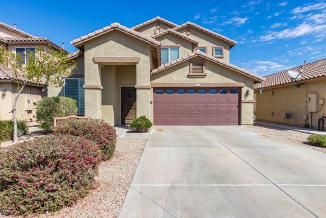 44172 W Mcclelland Drive, Maricopa, AZ 85138 (MLS #5899627) :: Yost Realty Group at RE/MAX Casa Grande