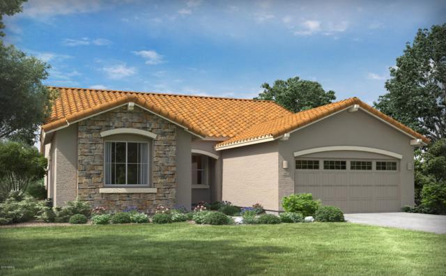 3152 E Azalea Drive, Chandler, AZ 85286 (MLS #5899635) :: Lux Home Group at  Keller Williams Realty Phoenix