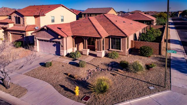 16524 W Hadley Street, Goodyear, AZ 85338 (MLS #5899637) :: CC & Co. Real Estate Team