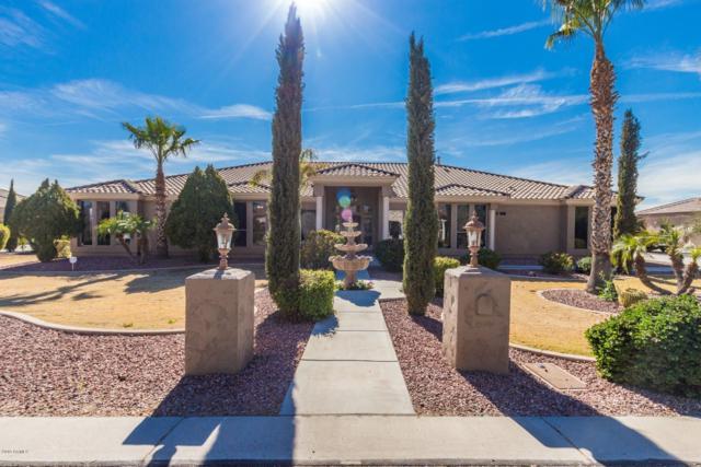 16461 W Hilton Avenue, Goodyear, AZ 85338 (MLS #5899645) :: Yost Realty Group at RE/MAX Casa Grande