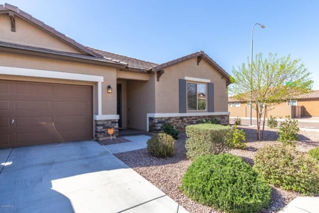 12021 W Chase Lane, Avondale, AZ 85323 (MLS #5899661) :: Yost Realty Group at RE/MAX Casa Grande