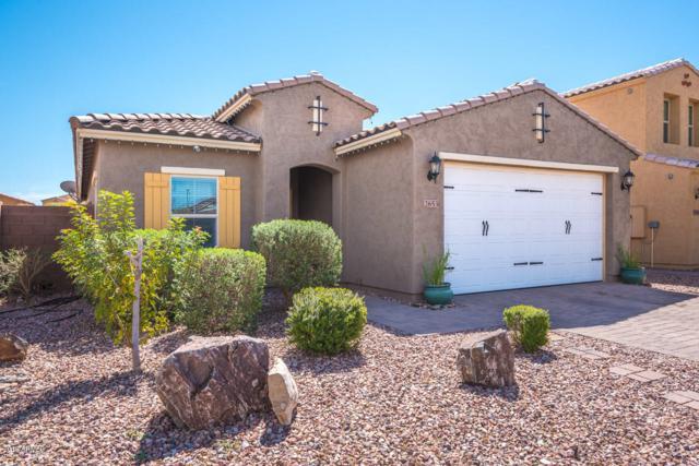 2653 E Hickory Street, Gilbert, AZ 85298 (MLS #5899663) :: Yost Realty Group at RE/MAX Casa Grande