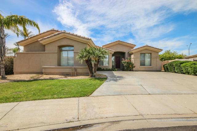 3204 N 146TH Avenue, Goodyear, AZ 85395 (MLS #5899676) :: Yost Realty Group at RE/MAX Casa Grande