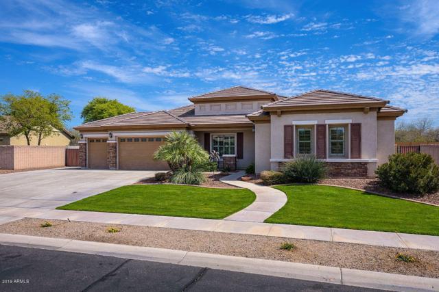 7445 N 85TH Drive, Glendale, AZ 85305 (MLS #5899677) :: neXGen Real Estate