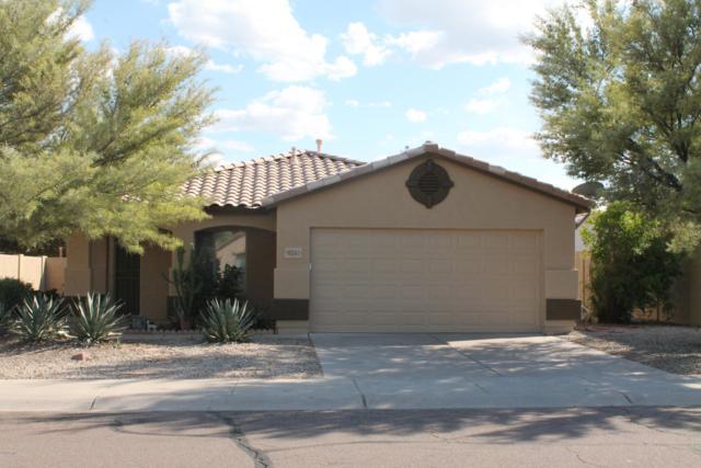 16245 W Buchanan Street, Goodyear, AZ 85338 (MLS #5899705) :: The Wehner Group