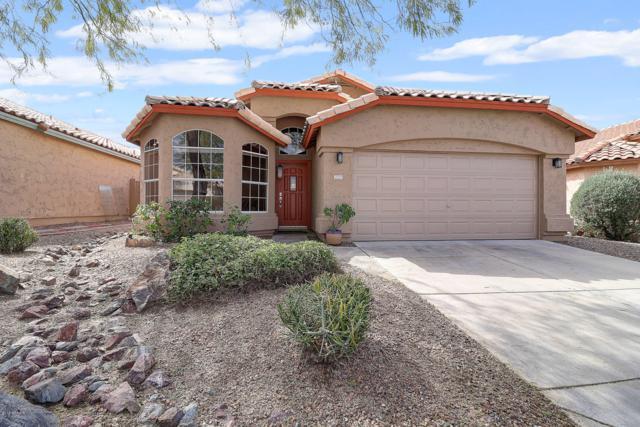 2223 E Donald Drive, Phoenix, AZ 85024 (MLS #5899712) :: The Wehner Group