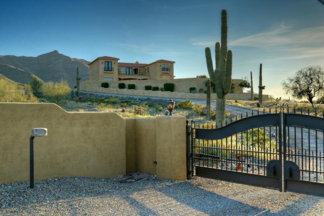 10456 S 25TH Avenue, Phoenix, AZ 85041 (MLS #5899724) :: neXGen Real Estate