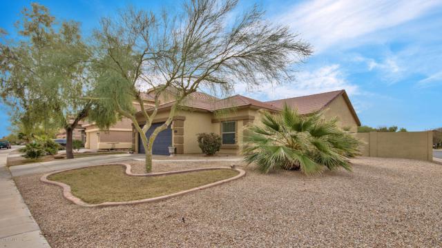 41437 W Capistrano Drive, Maricopa, AZ 85138 (MLS #5899740) :: Arizona 1 Real Estate Team