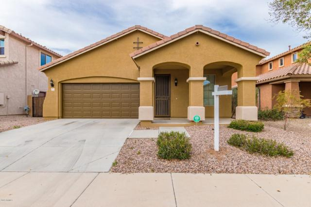 4114 E Bellerive Drive, Chandler, AZ 85249 (MLS #5899765) :: neXGen Real Estate