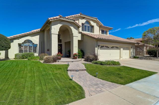 1014 W Sherri Drive, Gilbert, AZ 85233 (MLS #5899784) :: Santizo Realty Group