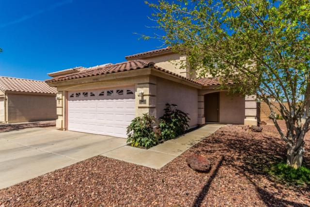 11914 W Aster Drive, El Mirage, AZ 85335 (MLS #5899801) :: Home Solutions Team