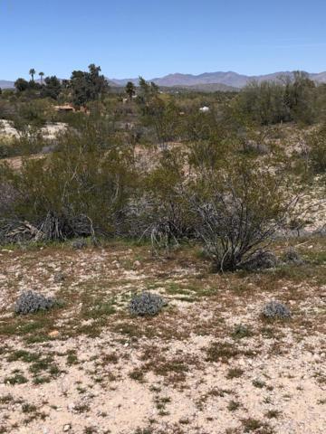 56XXX N Vulture Mine Road, Wickenburg, AZ 85390 (MLS #5899812) :: neXGen Real Estate