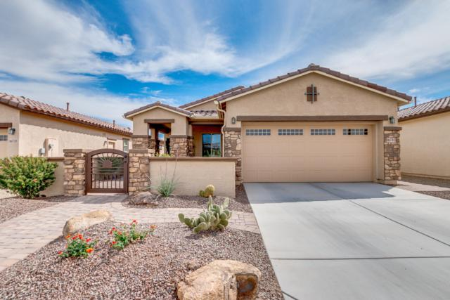 16743 S 178TH Drive, Goodyear, AZ 85338 (MLS #5899842) :: Kortright Group - West USA Realty