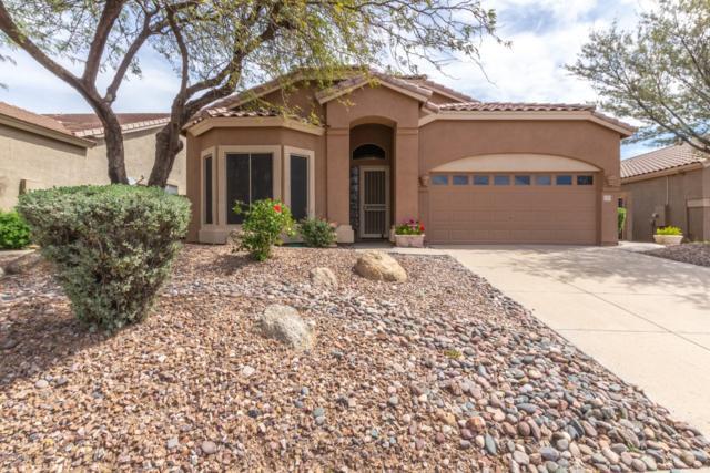 3055 N Red Mountain #147, Mesa, AZ 85207 (MLS #5899871) :: Yost Realty Group at RE/MAX Casa Grande