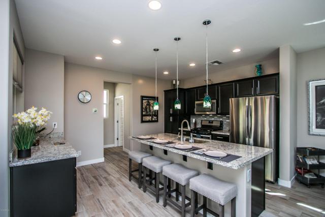 7064 W Stardust Drive, Chandler, AZ 85226 (MLS #5899877) :: Yost Realty Group at RE/MAX Casa Grande
