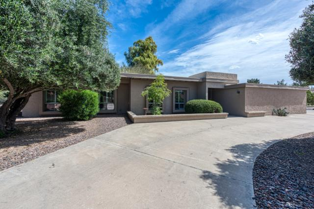 12007 N 56TH Street, Scottsdale, AZ 85254 (MLS #5899898) :: Team Wilson Real Estate