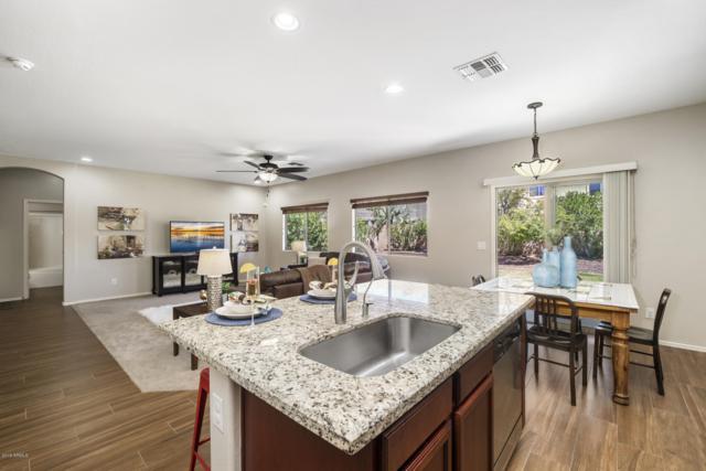 2540 E Misty Willow Lane, Phoenix, AZ 85024 (MLS #5899949) :: Occasio Realty