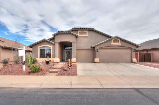 22233 N Reis Drive, Maricopa, AZ 85138 (MLS #5899961) :: Santizo Realty Group