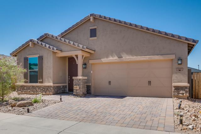 3007 W Woburn Lane, Phoenix, AZ 85085 (MLS #5899965) :: Yost Realty Group at RE/MAX Casa Grande