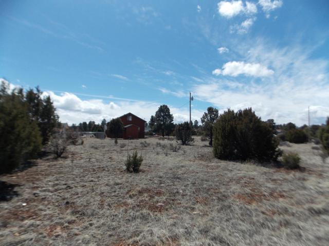 2243 Meadow Lane, Overgaard, AZ 85933 (MLS #5899977) :: Lifestyle Partners Team