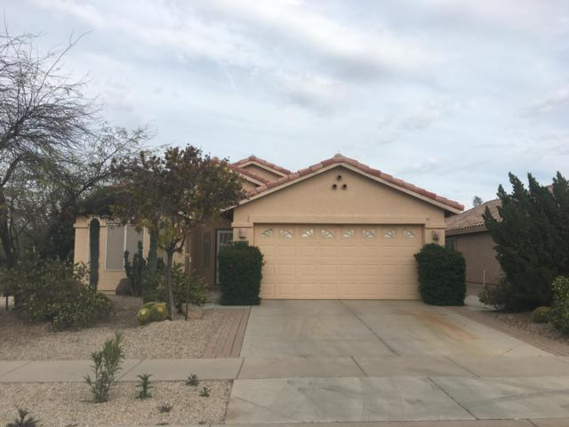 66 N Seville Lane, Casa Grande, AZ 85194 (MLS #5900003) :: Arizona 1 Real Estate Team