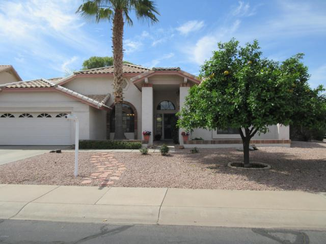 1961 E Calle De Caballos, Tempe, AZ 85284 (MLS #5900011) :: Arizona 1 Real Estate Team