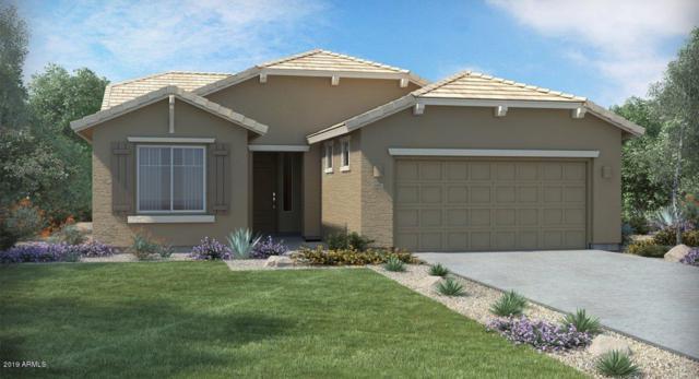 24127 N 166TH Drive, Surprise, AZ 85387 (MLS #5900014) :: CC & Co. Real Estate Team