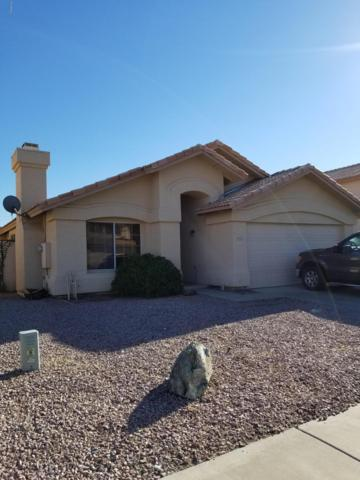 5031 W Kesler Lane, Chandler, AZ 85226 (MLS #5900031) :: Lux Home Group at  Keller Williams Realty Phoenix