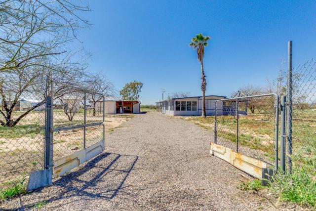 14080 N Palo Verde Drive, Maricopa, AZ 85138 (MLS #5900044) :: Arizona 1 Real Estate Team