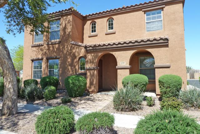2816 E Megan Street, Gilbert, AZ 85295 (MLS #5900057) :: Occasio Realty
