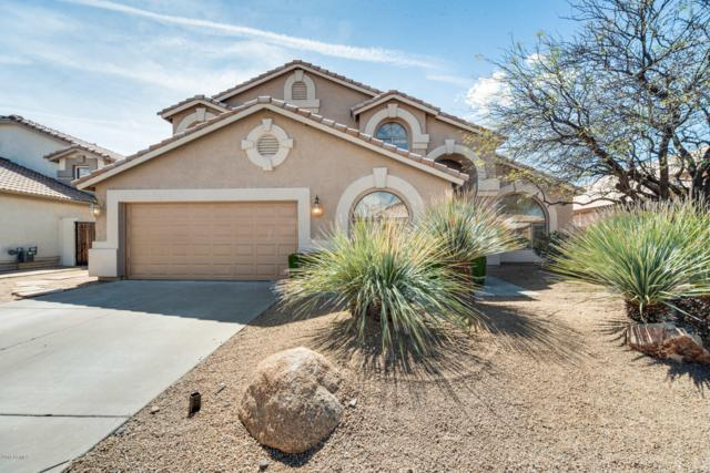 29230 N 44TH Street, Cave Creek, AZ 85331 (MLS #5900071) :: Riddle Realty