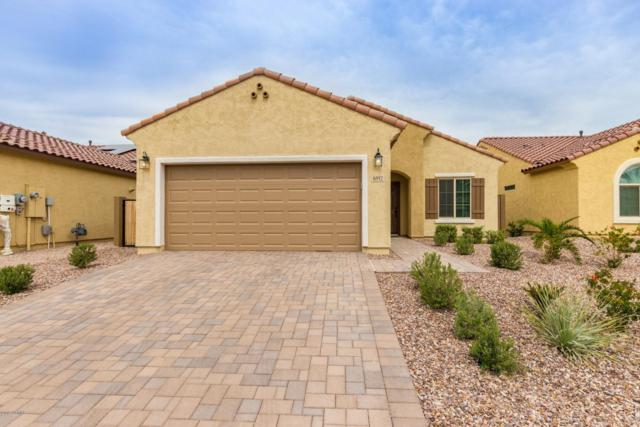 6912 W Pleasant Oak Court, Florence, AZ 85132 (MLS #5900079) :: Kepple Real Estate Group