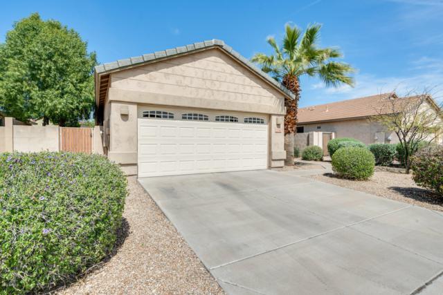 5766 W Golden Lane, Glendale, AZ 85302 (MLS #5900133) :: Yost Realty Group at RE/MAX Casa Grande