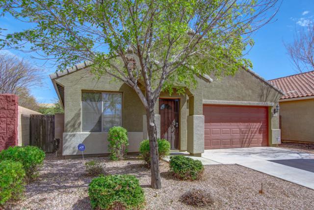 7251 N 89TH Drive, Glendale, AZ 85305 (MLS #5900159) :: Yost Realty Group at RE/MAX Casa Grande